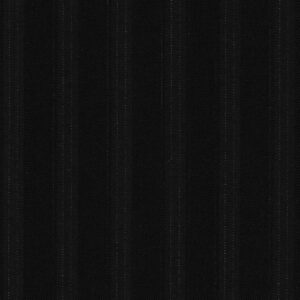 dormeuil guanashina super 200s black with stripes
